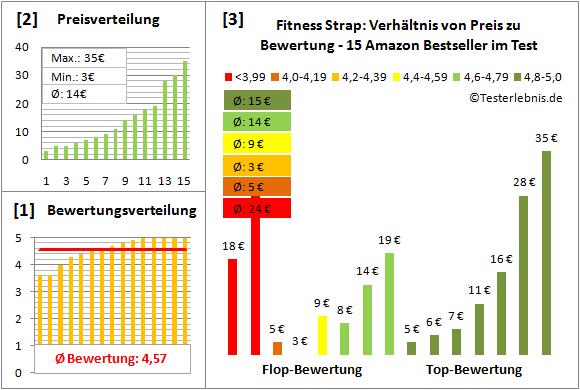 Fitness-Strap Test Bewertung